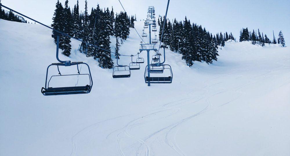 Ski tracks on powder