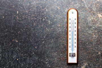 Wooden weather Thermometer